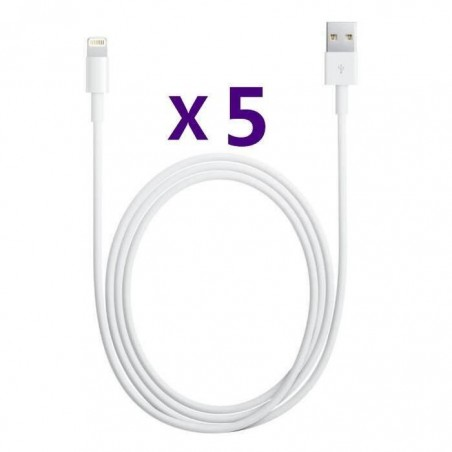5 CABLES IPHONE LIGHTNING AA