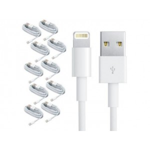 10 CABLES IPHONE LIGHTNING AA